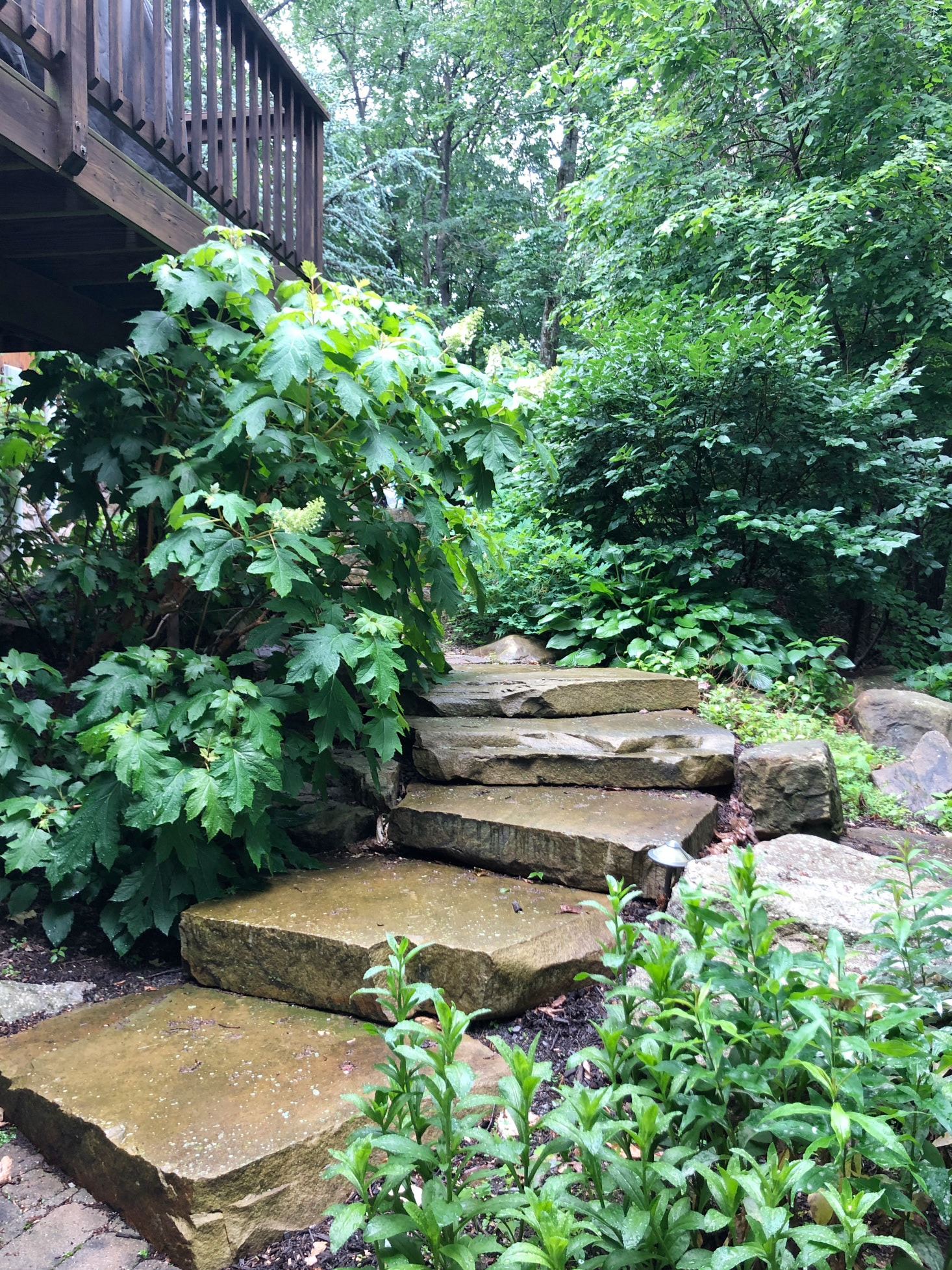Cabin exterior stone steps