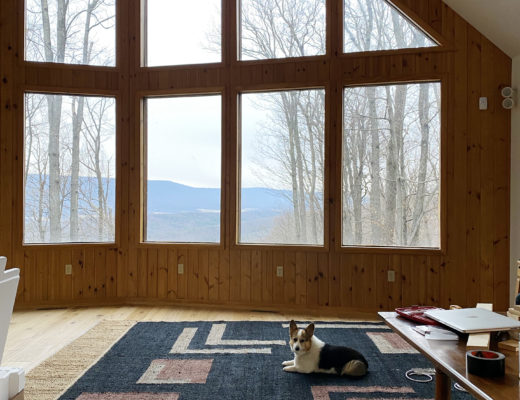 Cabin Living Room View with Corgi