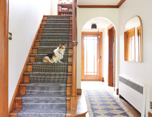 Corgi on stairs with stair runner